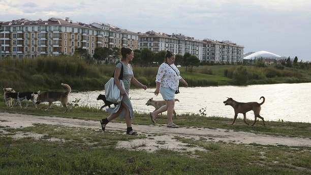 Women walk past stray dogs, with the Fisht Stadium seen in the background, in Sochi, the host city for the 2018 FIFA World Cup, Russia May 18, 2018. REUTERS/Kazbek Basayev - UP1EE5I1TQ05E