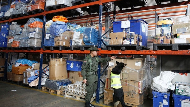 The Sombra drug dog searches in the cargo bay of El Dorado for Drug Airport in Bogota, Colombia, on Thursday, July 26, 2018. Some of Sombra's recent busts include the detection of over five tons of cocaine by the Gulf Clan, which is responsible for Destined to Europe and hidden in boxes of bananas. Overall, the police are giving their incredible nose more than 245 drug-related arrests at two of Colombia's largest international airports. (AP Photo / Fernando Vergara)