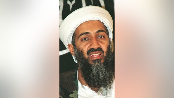 The Arabic-language television station al-Jazeera said November 12,