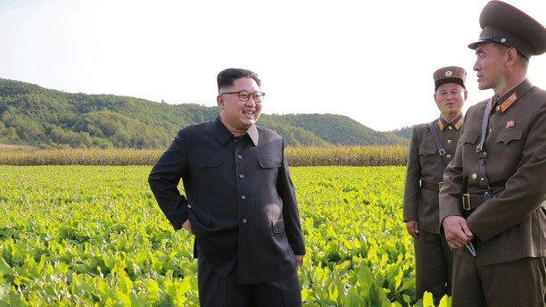 North Korean leader Kim Jong Un visits a Farm No. 1116 of KPA Unit 810 in this September 29, 2017 photo released by North Korea's Korean Central News Agency (KCNA) in Pyongyang. KCNA/via REUTERS ATTENTION EDITORS - THIS IMAGE WAS PROVIDED BY A THIRD PARTY. REUTERS IS UNABLE TO INDEPENDENTLY VERIFY THIS IMAGE. NO THIRD PARTY SALES. SOUTH KOREA OUT. - RC1A33F958E0