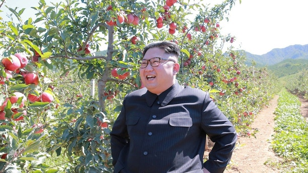 North Korean leader Kim Jong Un visits a fruit orchard in Kwail county, South Hwanghae province in this undated photo released by North Korea's Korean Central News Agency (KCNA) in Pyongyang September 21, 2017. KCNA via REUTERS ATTENTION EDITORS - THIS PICTURE WAS PROVIDED BY A THIRD PARTY. REUTERS IS UNABLE TO INDEPENDENTLY VERIFY THIS IMAGE. NO THIRD PARTY SALES. SOUTH KOREA OUT. - RC17145237B0