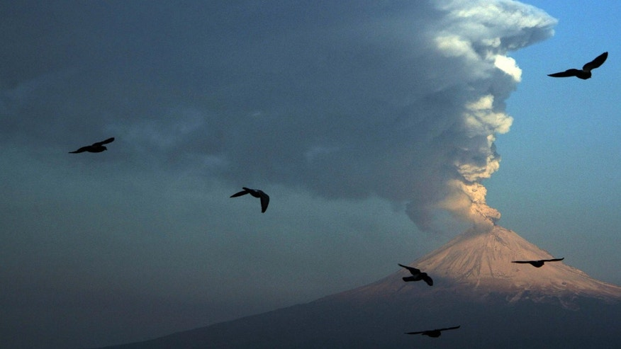 Birds fly in the foreground as a plume of ash and steam rise from Popocatepetl volcano as seen from San Andres Cholula, Mexico, Wednesday April 18, 2012. Mexico's Popocatepetl volcano is continuing to spout gases and hot rock fragments and it is dusting towns on its flanks with volcanic ash. (AP Photo)