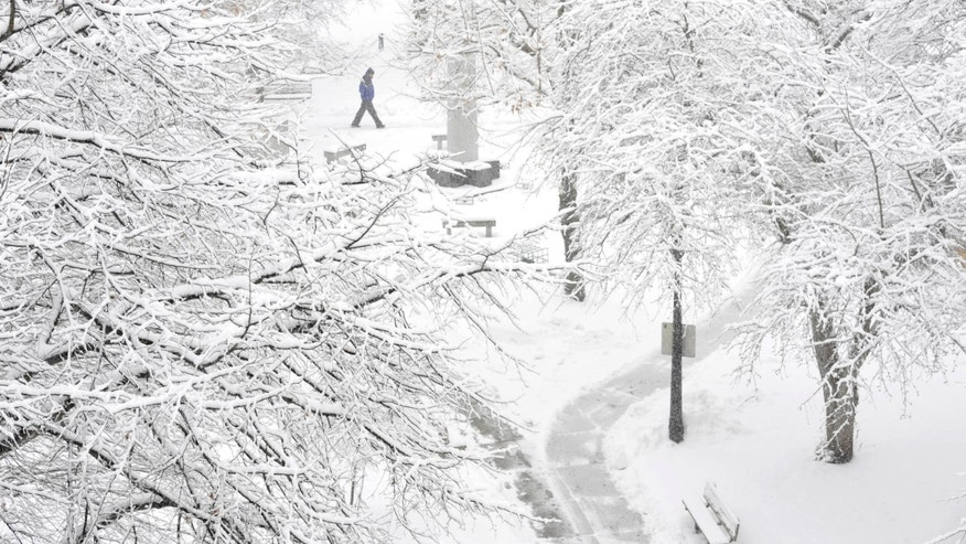 A pedestrian passes through Johnstown Central Park, in Johnstown, Pa., Monday, Jan. 26, 2015. Gov. Tom Wolf declared a state of emergency Monday as a nor'easter expected to dump snow across the state approached.  (AP Photo/The Tribune-Democrat, Todd Berkey) MANDATORY CREDIT
