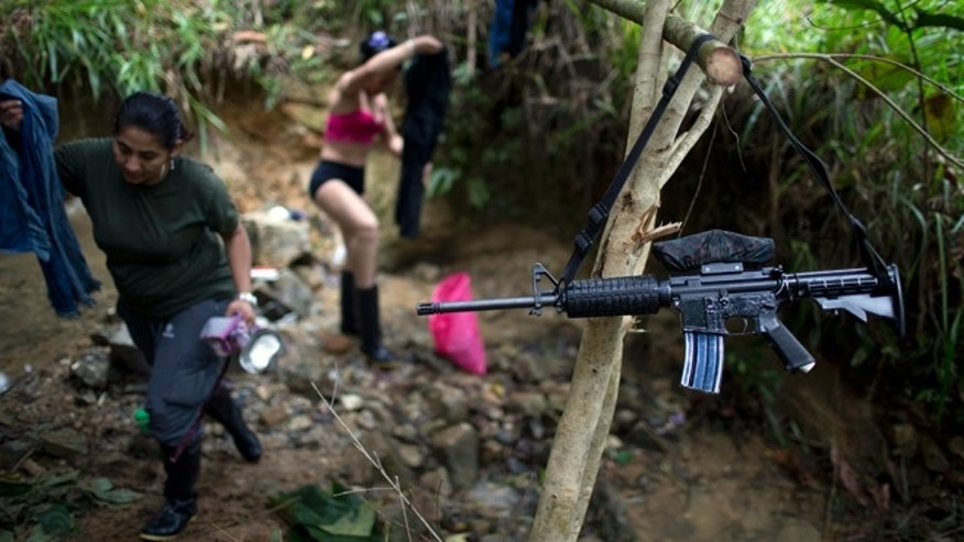 """In this Jan. 4, 2016 photo, the weapon of a rebel fighter for the 36th Front of the Revolutionary Armed Forces of Colombia, or FARC, hangs from a branch serving as a makeshift clothesline, near a rebel camp, in Antioquia state, in the northwest Andes of Colombia. """"We'll lay aside our weapons, like the accord says, but never hand them over,"""" says Juan Pablo, a commander of the 36th Front. (AP Photo/Rodrigo Abd)"""