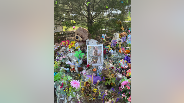 Gabby Petito memorial visitors come to pay respects: 'it touches us all'