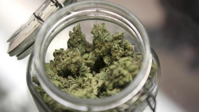 Marijuana 101: Planting seeds for legal pot