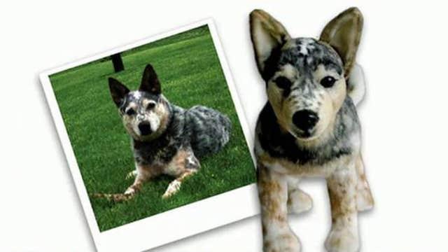 Creating custom stuffed animal clones of your pet