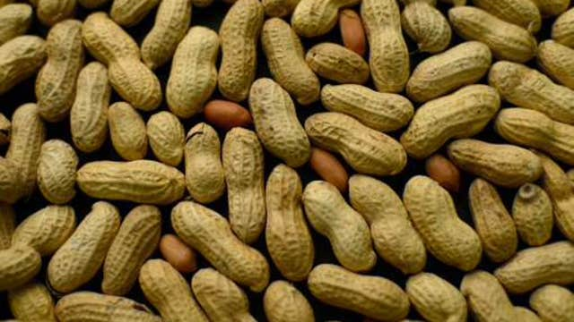 New way to prevent peanut allergies