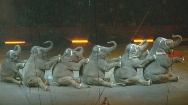 Jack Hanna: I admire Ringling for what they did