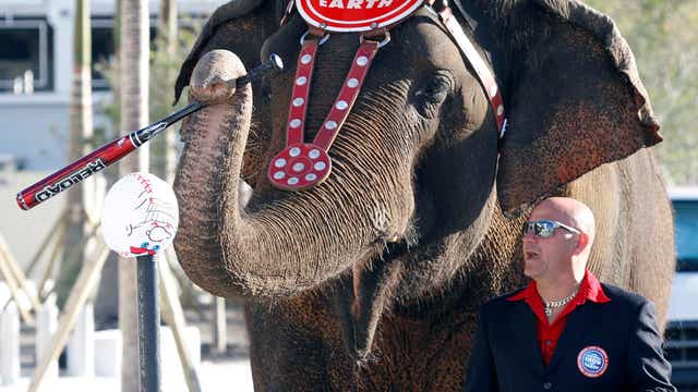 Feld Entertainment Chairman & CEO Kenneth Feld on Ringling shutting down the elephant show.