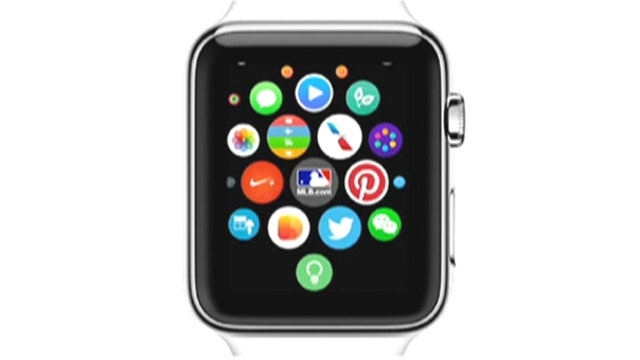 Apple Watch a fad or a game changer?