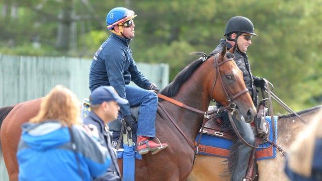 Race horse owner Sheila Rosenblum on how she got involved in the sport.