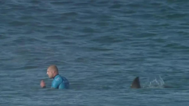 World Surf League CEO Paul Speaker on the use of drones to detect sharks.