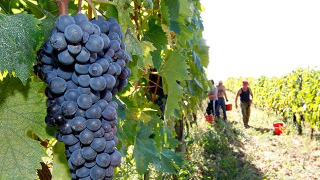 New urban winery opens in Seattle