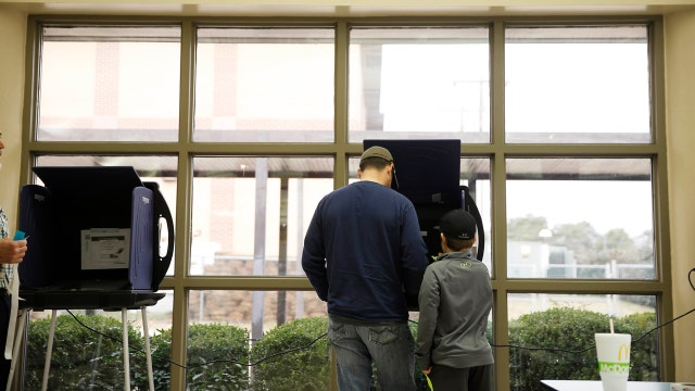 Michigan GOP Chair on voter turnout for the 2016 primary