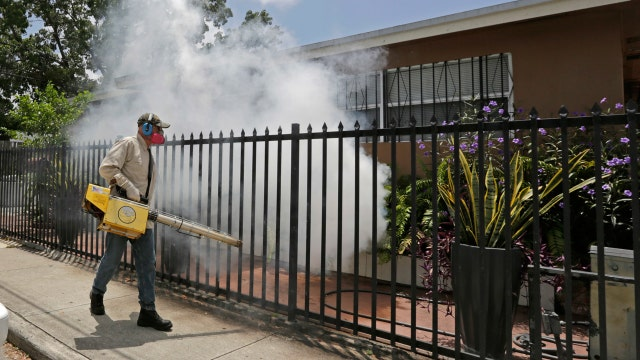 Fighting Zika with a mosquito army
