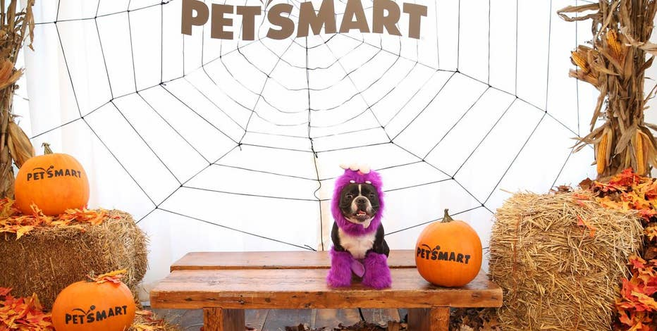 FOXBusiness.com's Serena Elavia visits the PetSmart Halloween fashion show to see the new costume collection.