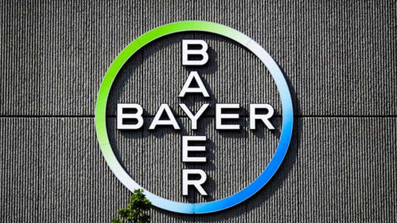 Monsanto shares up on bayer trump promise for billions in us monsanto shares up on bayer trump promise for billions in us investment jobs fox business buycottarizona Image collections