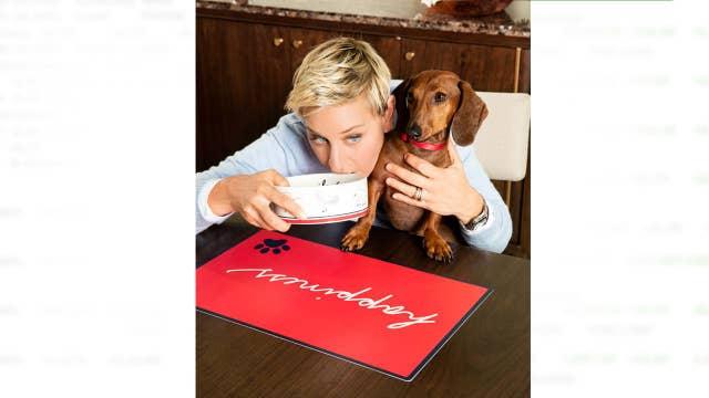 Ellen DeGeneres takes bite out of pet industry