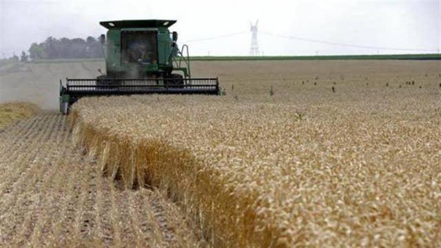 Farmer warns NAFTA overhaul, tariffs will lead to trade war