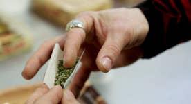 Has recreational marijuana use become too big to jail?