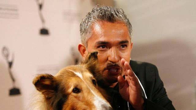 It's a ruff business! Cesar Millan, the Dog Whisperer, talks pitfalls and success of building his brand
