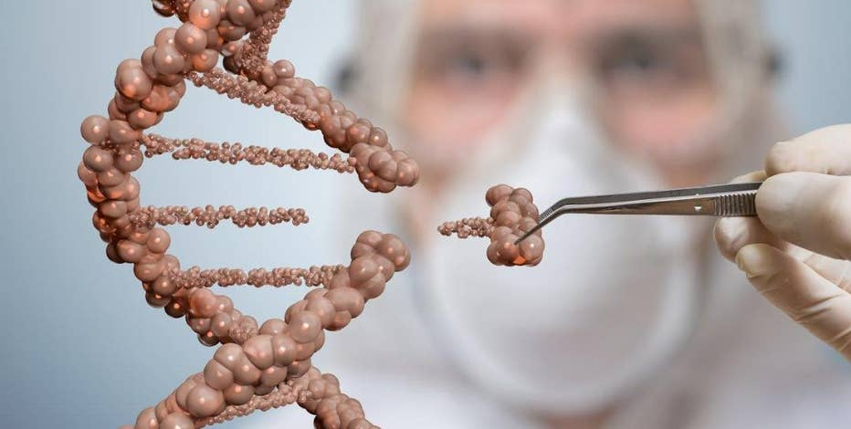 Dr. Robert Fraley, Monsanto's Chief Scientific Officer says gene editing is a new innovation that could reshape how we eat.
