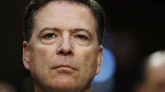 Comey is a disgruntled former employee: Puzder