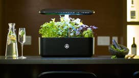 The smart garden of the future