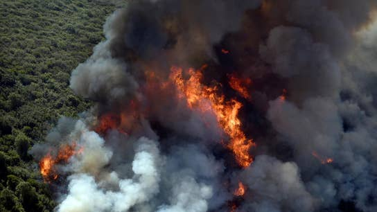 California wildfires: San Francisco utility sued for negligence