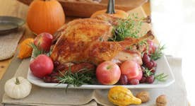 Avoid politics at the Thanksgiving dinner table?