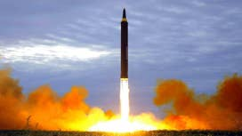 US will launch nukes to save Seoul: McInerney