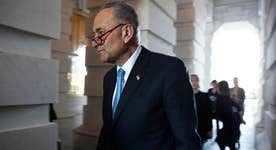 The 'Schumer Shutdown' is pure politics: Varney