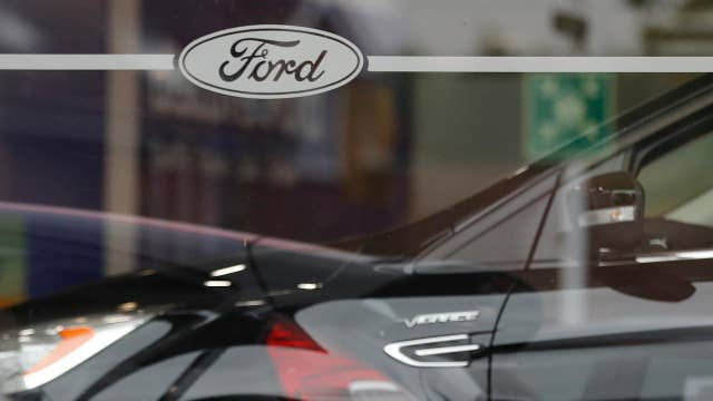 Ford's investment in America