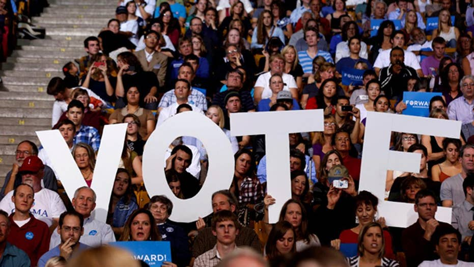 Will Democrats' resistance strategy hurt them in midterm elections?