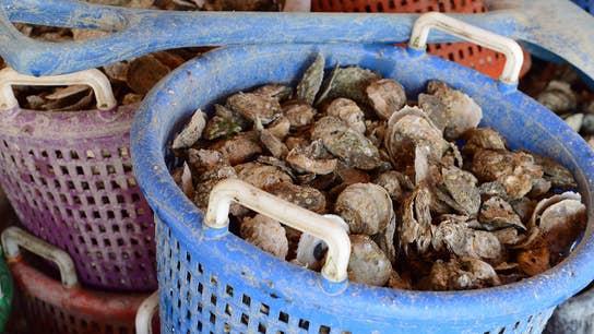 Strange Inheritance: World's my oyster