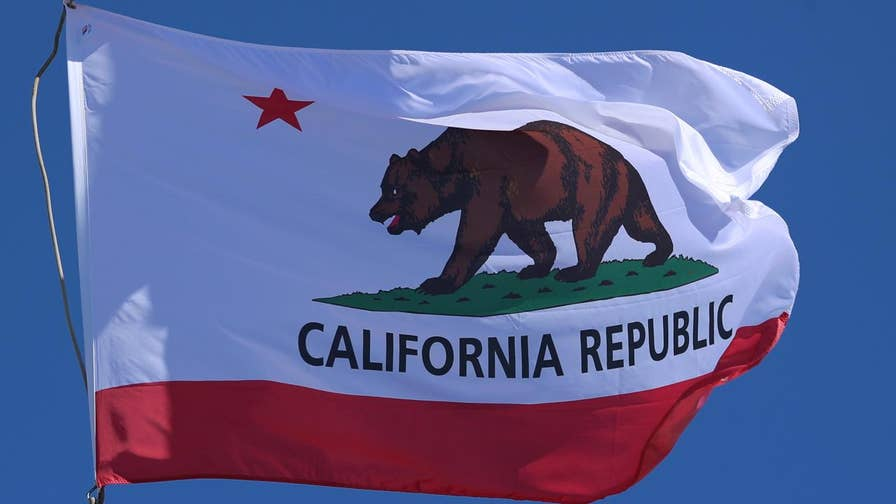Washington Examiner commentary editor Tim Carney discusses Los Alamitos' vote to opt out of a California sanctuary law and whether states should be allowed to oppose the federal government's immigration enforcement.