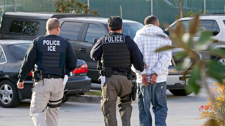 Los Alamitos Mayor Troy Edgar discusses how his city and others are opposing California's sanctuary law.