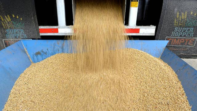 Trade war comes to US soybean country