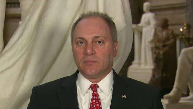 Rep. Scalise on immigration: Democrats don't want to solve the problem