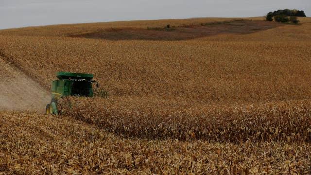 Impact of tariffs on American farmers