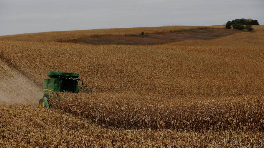 Summit Agricultural Group CEO Bruce Rastetter on the impact of tariffs on American farmers.