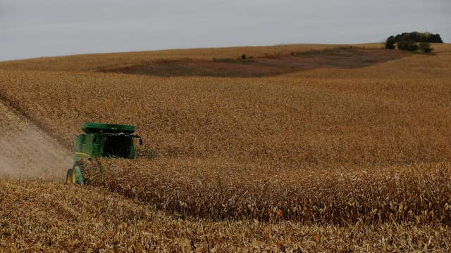 Farmer on Trump's Europe deal: Appreciative of Trump trying to help us