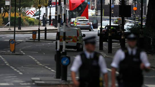 London crash investigated by Scotland Yard counter-terrorism unit