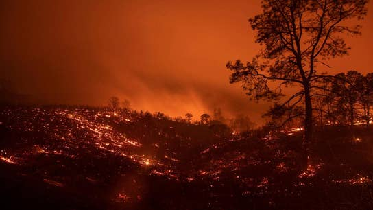 California's environmental policies have harmed our forests: Rep. McClintock