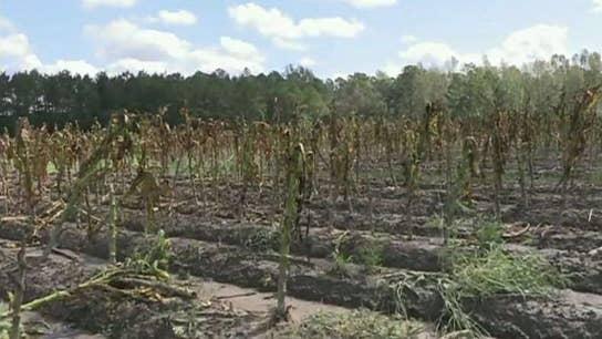 North Carolina economy depends on tobacco: Farm Bureau president