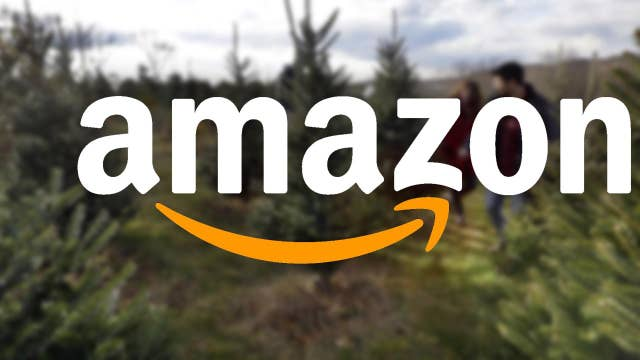 Fresh-cut Christmas trees now available on Amazon