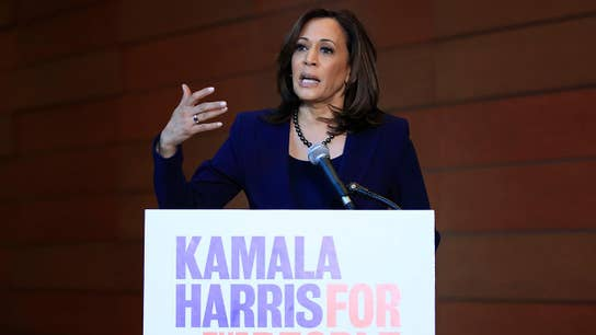 Kamala Harris' tax plan would cost the Treasury $3 trillion over 10 years: Report