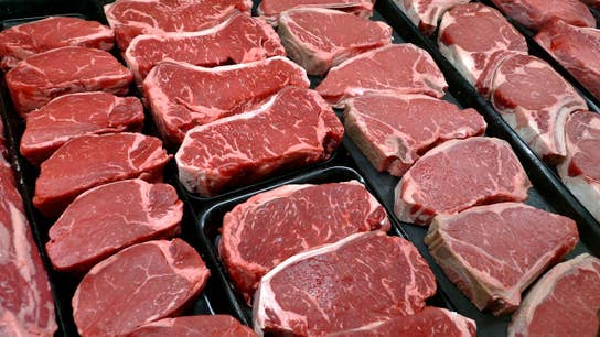 PETA spokesperson says the meat industry is the leading cause of greenhouse gas emissions