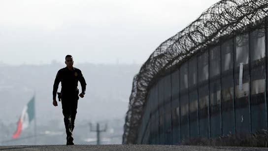 US southern border is completely overwhelmed: Steve Hilton